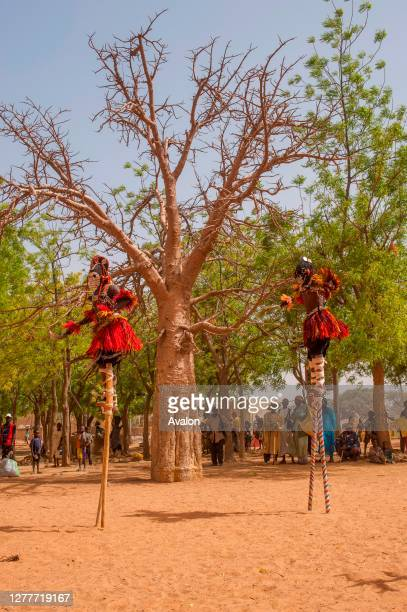 Traditional dances of the Dogon people in the village of Sangha in the Dogon country in Mali, West Africa.