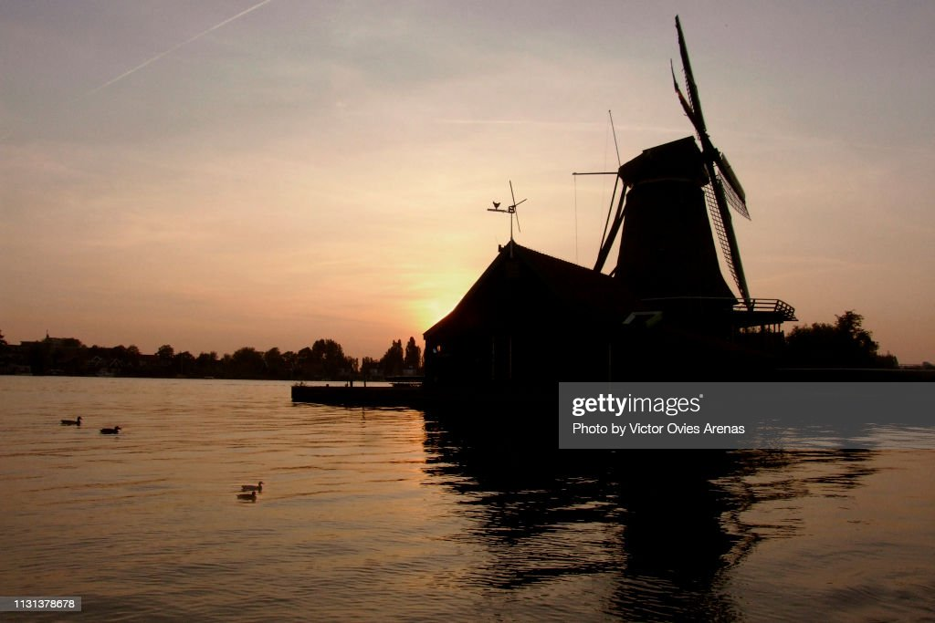 Traditional Dutch windmill, house and ducks on the banks of river Zaan backlighted at sunset in Zaanse Schans, Netherlands : Foto de stock