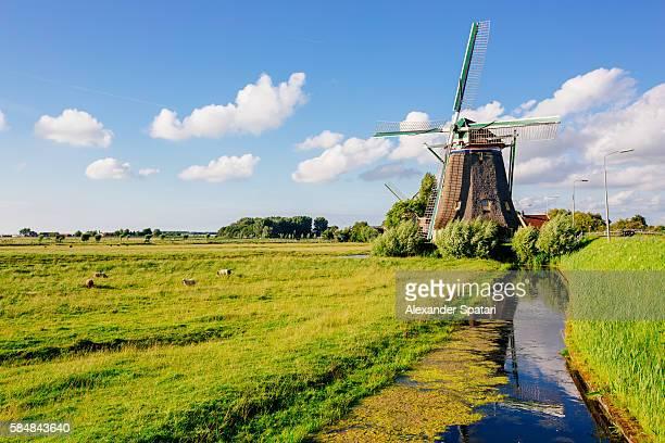 Traditional Dutch windmill near Maasland, Holland, Netherlands