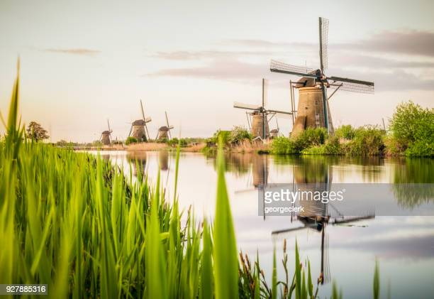 traditional dutch windmills at kinderdijk - netherlands stock pictures, royalty-free photos & images