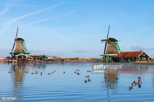 traditionele nederlandse windmolens op de zaanse schans, amsterdam, nederland - molen stockfoto's en -beelden