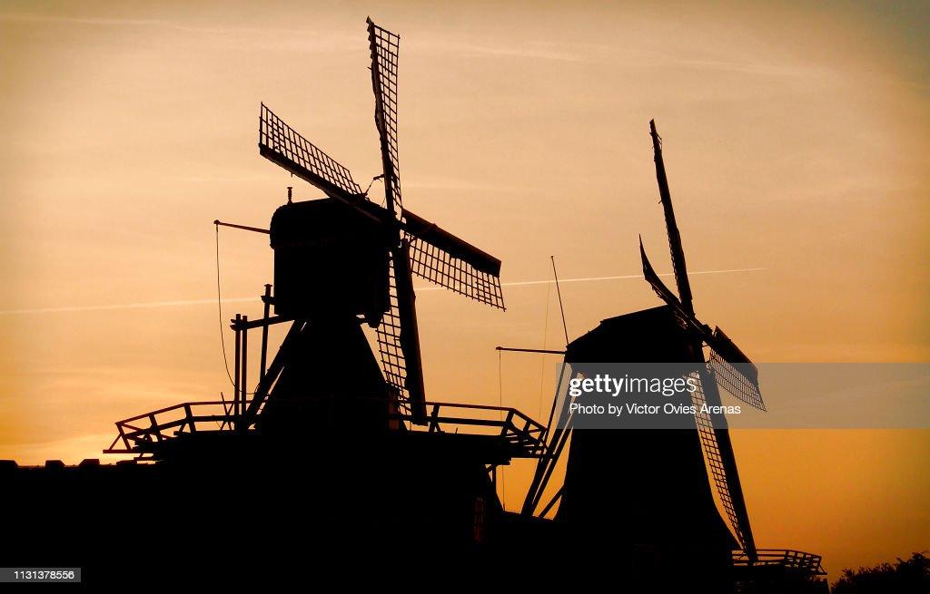 Traditional Dutch windmills backlighted at sunset in Zaanse Schans, Netherlands : Foto de stock