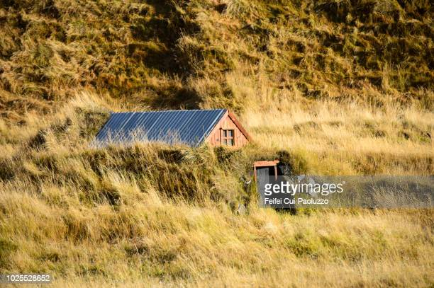 traditional farmhouse at reynisfjara, south coast of iceland - feifei cui paoluzzo stock pictures, royalty-free photos & images