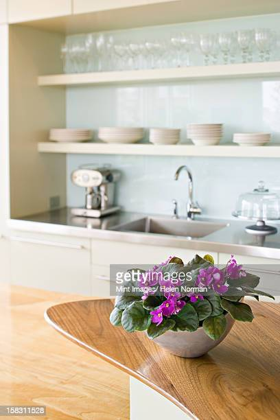 a traditional farmhouse kitchen with a kitchen island, and a bowl of african violet plants, pink saintpaulia in flower. - african violet stock photos and pictures