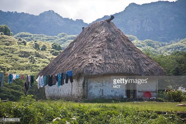 Traditional Fijian thatched bure is seen in Nalesutale Village east of Nadi upcountry Viti Levu Fiji