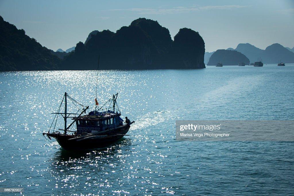 Traditional fishing boat. Halong bay : Stock Photo