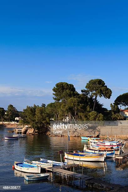 traditional fishing boats in port de l'olivette at antibes - antibes stock photos and pictures
