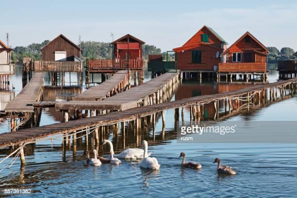 De huizen van de traditionele visserij op de oever van het meer, Hongarije.