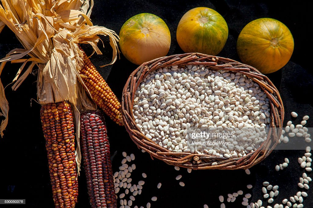Traditional Foods of the Southwest Tribes : Stock Photo