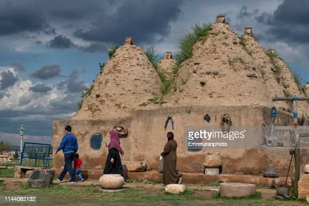 traditional harran house with conical mud roofs,sanliurfa province. - emreturanphoto stock-fotos und bilder