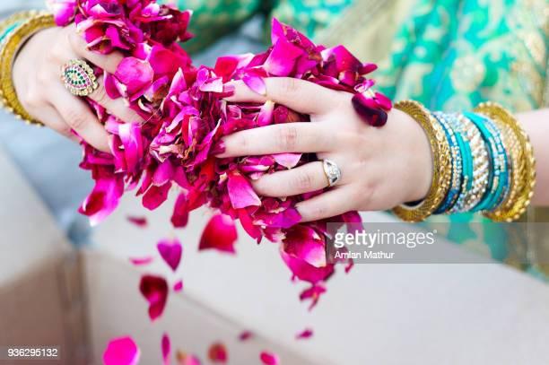 traditional hindu indian lady holding rose petals - roupa tradicional - fotografias e filmes do acervo