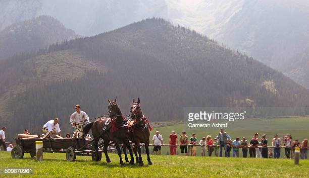 Traditional Horse Festival in Zdiar, Slovakia in the Tatra Mountains.