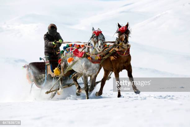 Traditional horse transport with sleigh on Lake Cildir