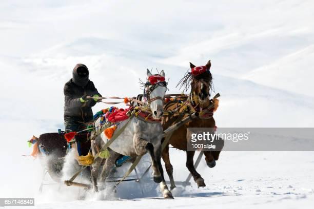 Transport de cheval traditionnel avec traîneau