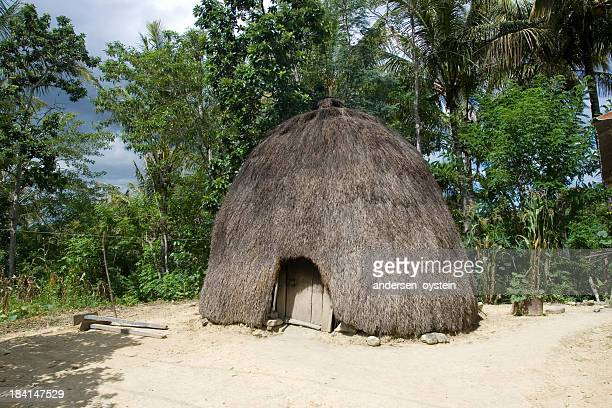 Traditional house of the Timorese people