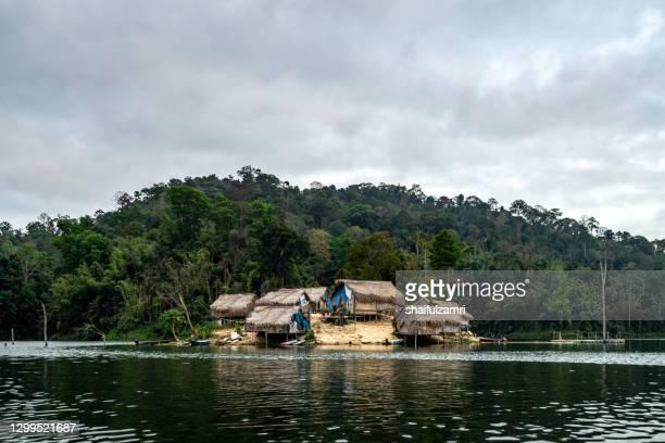 traditional hut of aboriginal people in royal belum national rainforest park. perak, malaysia. - shaifulzamri fotografías e imágenes de stock