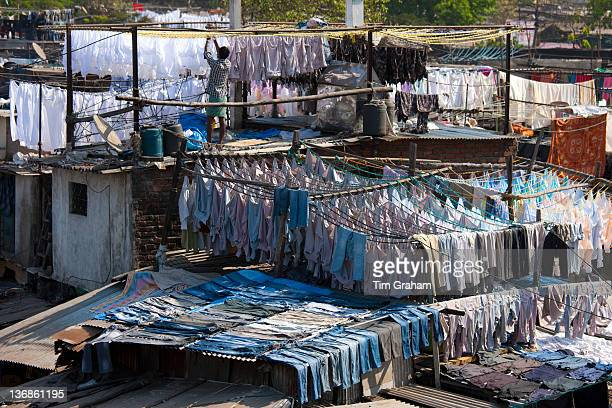 Traditional Indian professional hand laundry Dhobi Ghat in Mahalaxmi area of Mumbai India