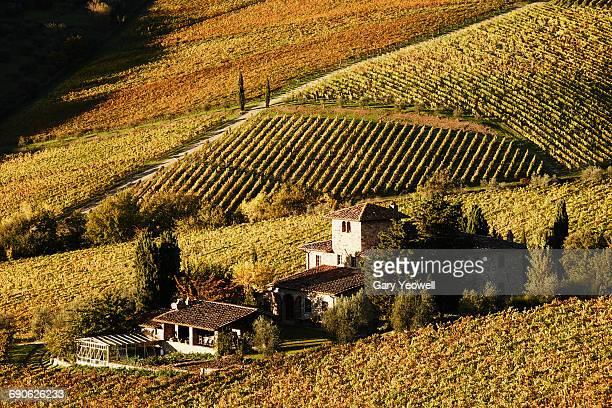 Traditional Italian Villa in vineyards