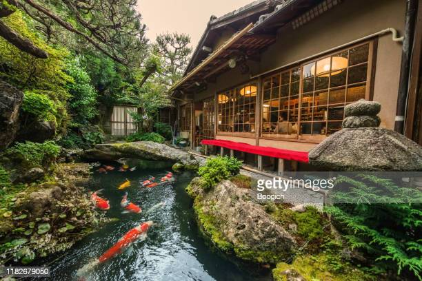 traditional japanese koi pond in kyoto japan - kyoto prefecture stock pictures, royalty-free photos & images