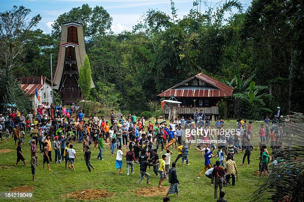 Traditional kickboxing fights are organised every in Tana Toraja every year after harvesting.