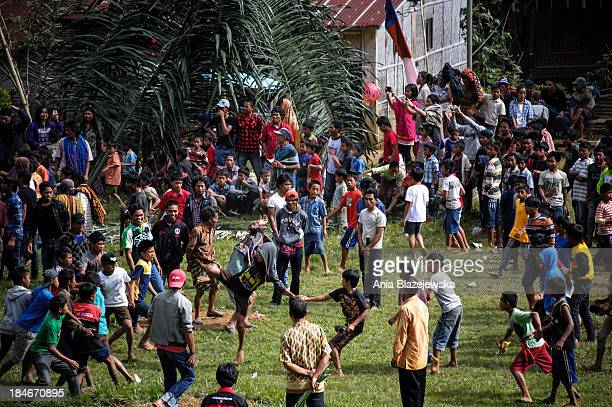 CONTENT] Traditional kickboxing fights usually takes part in Tana Toraja after harvest and they are a part of annual celebrations