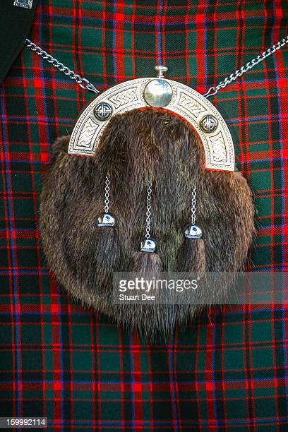 traditional kilt and sporran - tartan stock pictures, royalty-free photos & images