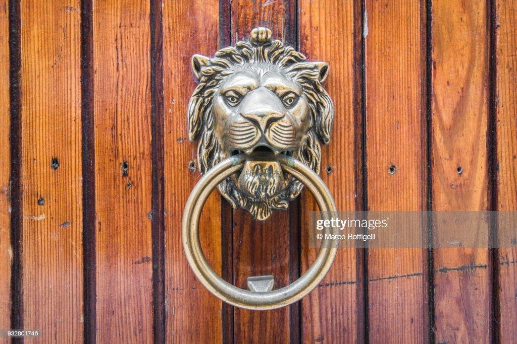Traditional lion's head door knocker. Venice, Veneto, Italy. : Stock Photo