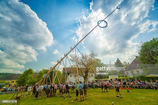 traditional maypole setting in burghausen - maypole stock pictures, royalty-free photos & images