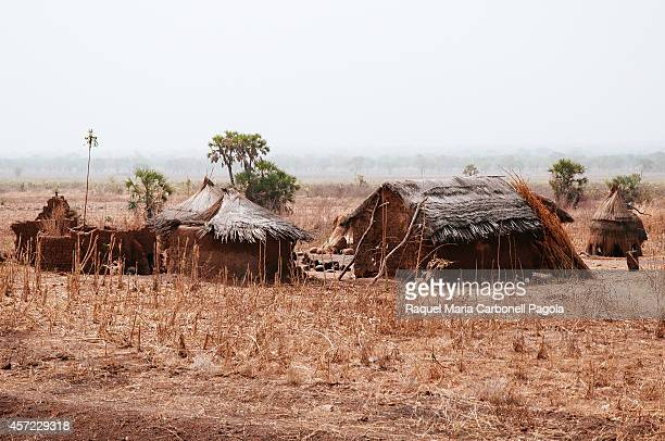 Traditional mud brick and tatched roof village on the frontier territory between Benin and Burkina Faso