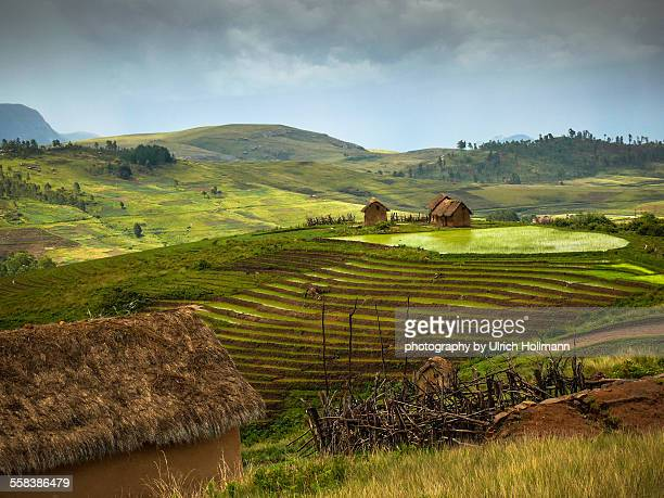 traditional mud houses and rice paddy, madagascar - madagascar stock photos and pictures