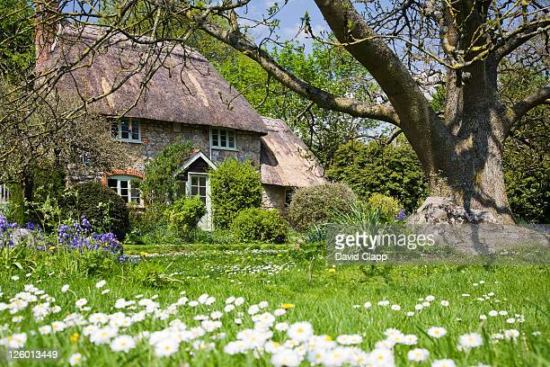 A traditional old thatched cottage and gardens in the village of Lockeridge in Wiltshire.