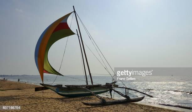 traditional outrigger fishing boat (oruva), negombo beach, sri lanka. - frans sellies stockfoto's en -beelden