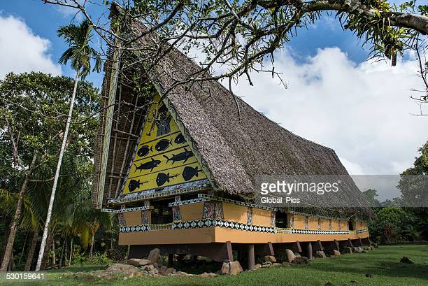 traditional palauan house - storyboard stock pictures, royalty-free photos & images