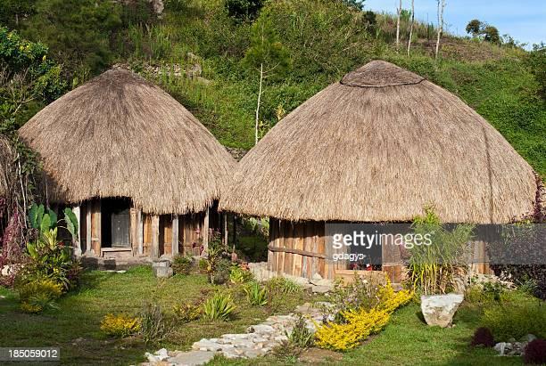 Traditional Papua Huts