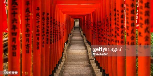 traditional red torii gates hei-jinja shrine panorama akasaka tokyo japan - giappone foto e immagini stock