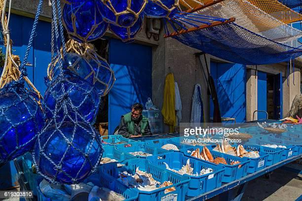 Traditional shellfish store, Sete, Herault, France