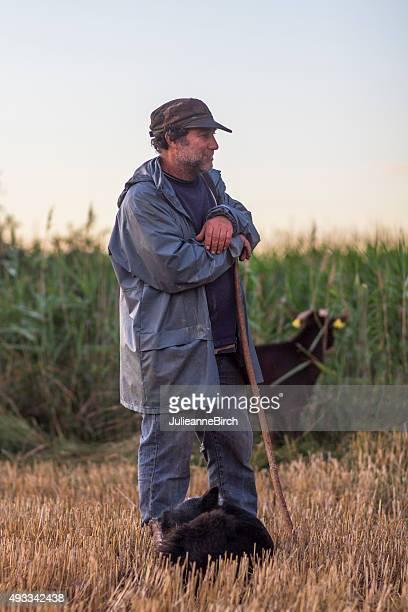 Traditional shepherd and his sheepdog
