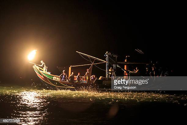 Traditional sulfur fire fishing as practiced near Jinshan on Taiwan's north coast Only 34 boats still practice this traditional technique in a...