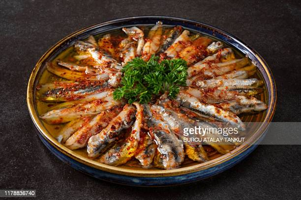 traditional turkish and greek fish appetizer, meze - sardine stock pictures, royalty-free photos & images