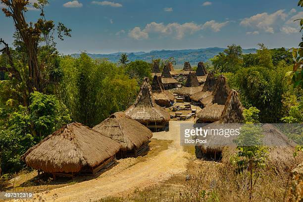 A traditional village on the island of Sumba