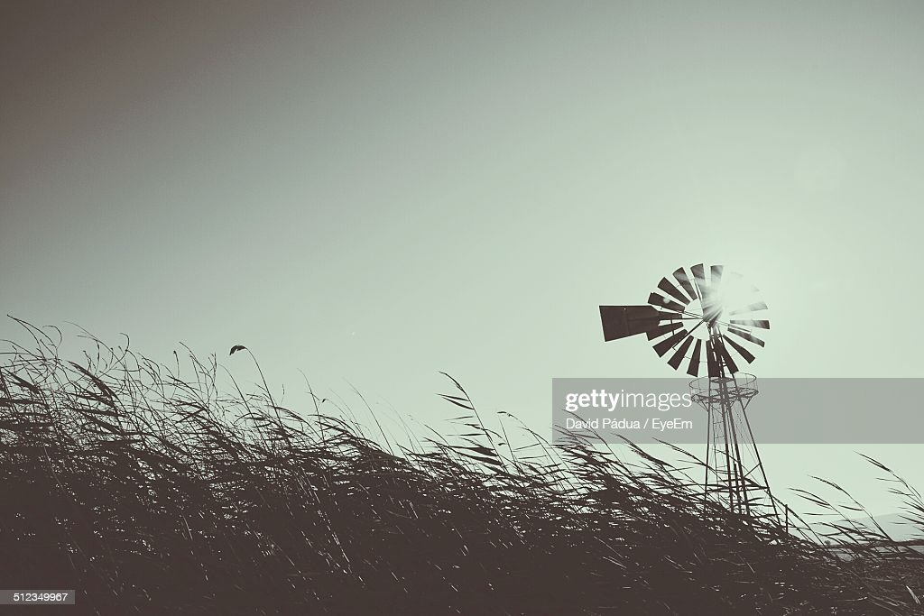 Traditional wind mill : Stock Photo