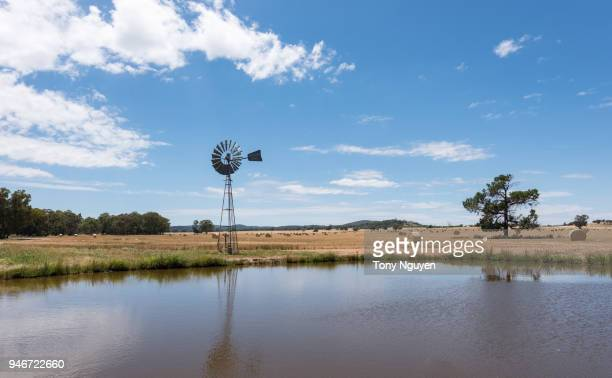 a traditional windmill beside the lake with golden hay bales in the field of australian countryside. - dubbo australia stock pictures, royalty-free photos & images