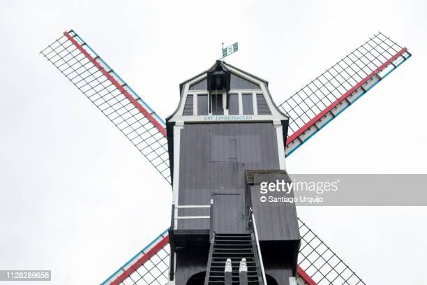 traditional windmill on a hill - old windmill stock photos and pictures