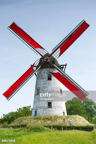 Traditional working Schellemolen windmill with red painted sails at Damme West Flanders in Belgium