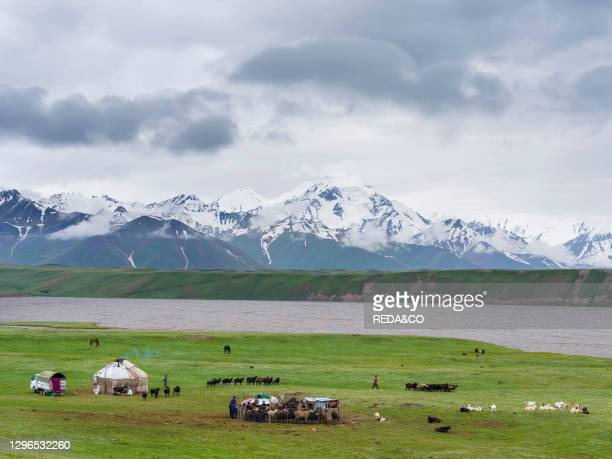 Traditional yurt the Transalai mountains in the background. Alaj valley in the Pamir Mountains. Asia. Central Asia. Kyrgyzstan.