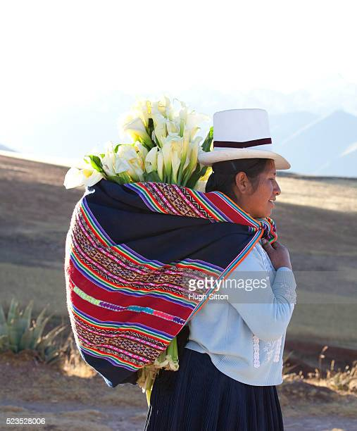 traditionally dressed woman carrying flowers, in the mountain region of moray. cusco. peru. - hugh sitton stock pictures, royalty-free photos & images