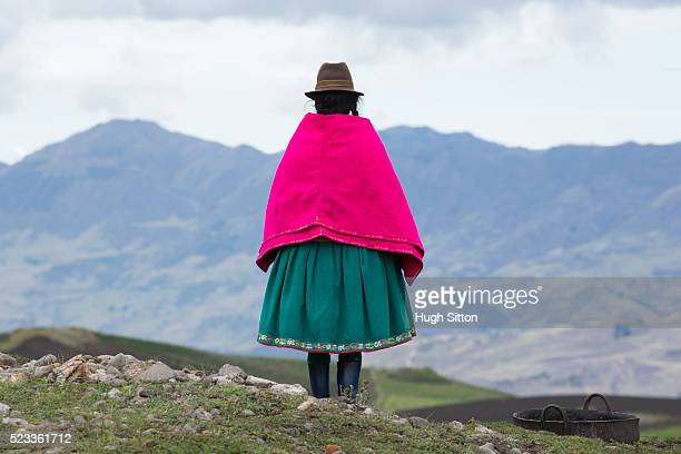 traditionally dressed woman, ecuador - hugh sitton stock pictures, royalty-free photos & images
