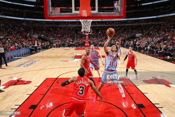 Trae Young of the Atlanta Hawks drives to the basket during the game against the Chicago Bulls on March 3 2019 at the United Center in Chicago...