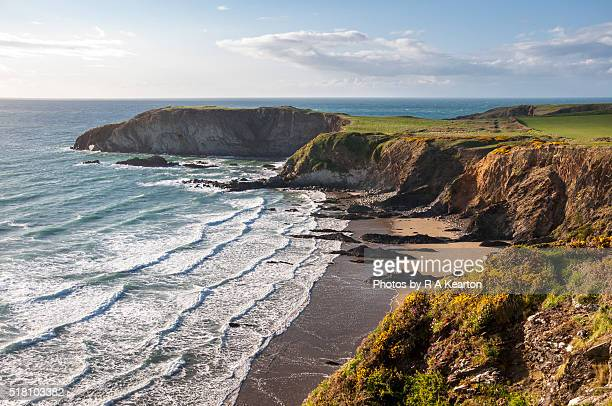 traeth llyfyn, pembrokeshire, wales - wales stock pictures, royalty-free photos & images