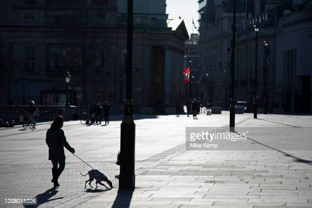 Trafalgar Square empty and almost deserted apart from a dog walker due to the Covid-19 outbreak social distancing on what would normally be a busy,...
